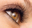 Eyebrow tinting Kitsilano Vancouver, Eyelash tinting Kitsilano, Eyebrow Waxing West 4th Ave Vancouver
